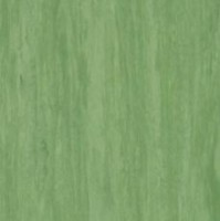 Standard Plus Dark Green 0921