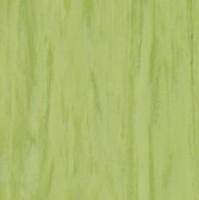 Standard Plus Lime 0922