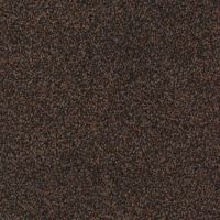 Torso Carpet 2921 Brown