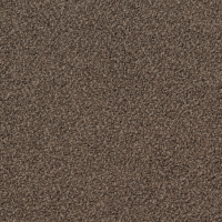Torso Carpet 9104 Grey Brown